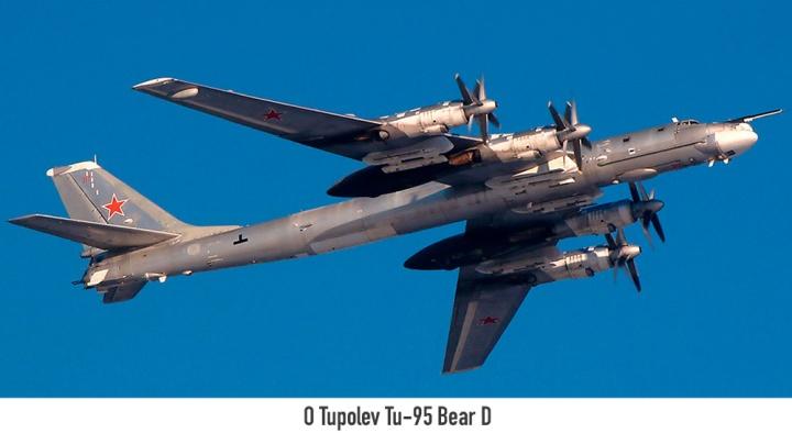 $03-Tu-95-Bear-D