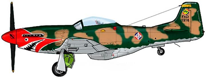 F-51D Mustang FAD No. 1916 135_13