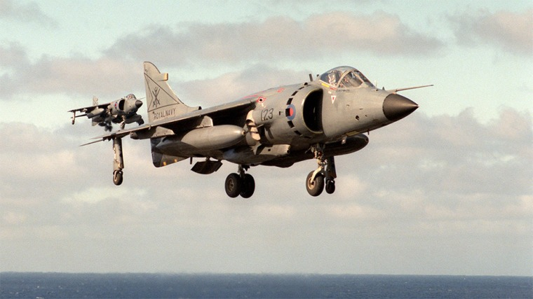 FOTO-4-Harrier.jpg