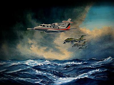 Constituído por aeronaves e pessoal civil, além dos militares, o Esquadrão Fênix executou várias tarefas durante o conflito das Malvinas.