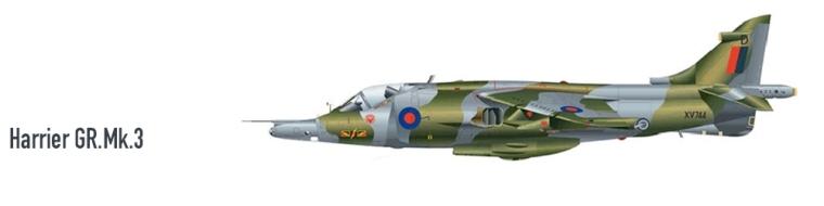 01-Harrier.jpg