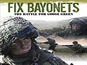 16-Battle for Goose Green.jpg