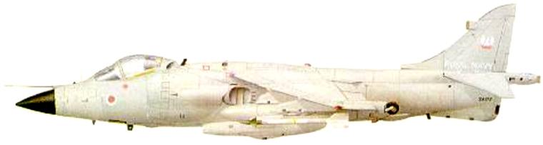 ILUSTRACAO-3.jpg