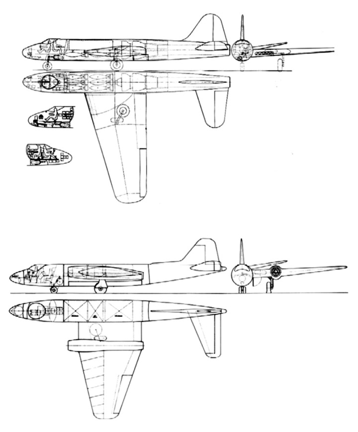FIGURA-2.jpg